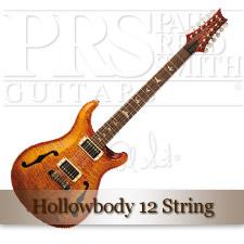 Hollowbody 12 String